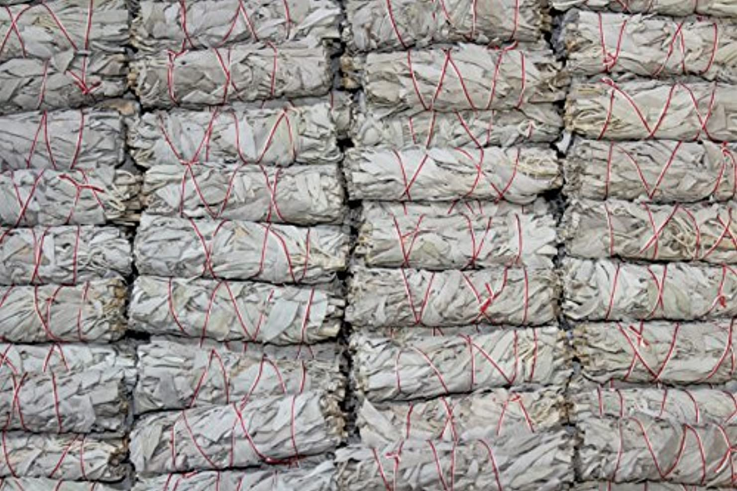 知覚マイナス定期的なMiniホワイトセージお香Wands – のセットで販売4束