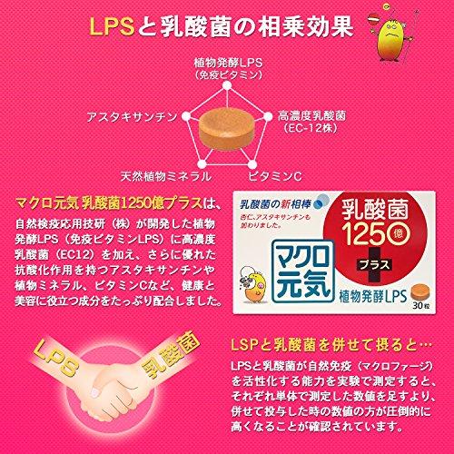 免疫ビタミンLPSサプリメント「マクロ元気乳酸菌1250億プラス」(2個セット30粒+30粒)リポポリサッカライド(LPS)+高濃度乳酸菌(EC-12)+アスタキサンチン配合(マクロ元気シリーズ)