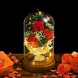 Shirylzee バラ 造花 枯れない花 誕生日 結婚記念日 バレンタイ プレゼント 薔薇 花束 LEDライト 付き 電池式 ホワイトデー 母の日 ローズ 結婚式 パーティー クリスマス お祝い 新年 お花 ギフト フラワー インテリア飾り お祝い