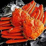 【ギフト対応】 最高級 天然ズワイガニ姿 大サイズ 蟹味噌たっぷりの厳選された本ずわい蟹 贈答用にも最適 【約600g×2尾】