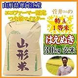 山形県寒河江市 菅井さんの食味特Aランク1等米 【はえぬき】 玄米 30kg
