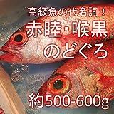 のどぐろ 喉黒 赤むつ 大サイズ 生 鮮魚(築地直送)約500-600g/1尾 日本海産他(鳥取・山口・島根他)アカムツ【生のどぐろ500g-600g】