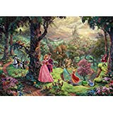 西洋絵画 ディズニー 眠れる森の美女 42x30cm Sleeping Beauty トーマスキンケード [並行輸入品]