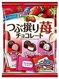 名糖産業 つぶ撰り苺チョコレート 290g