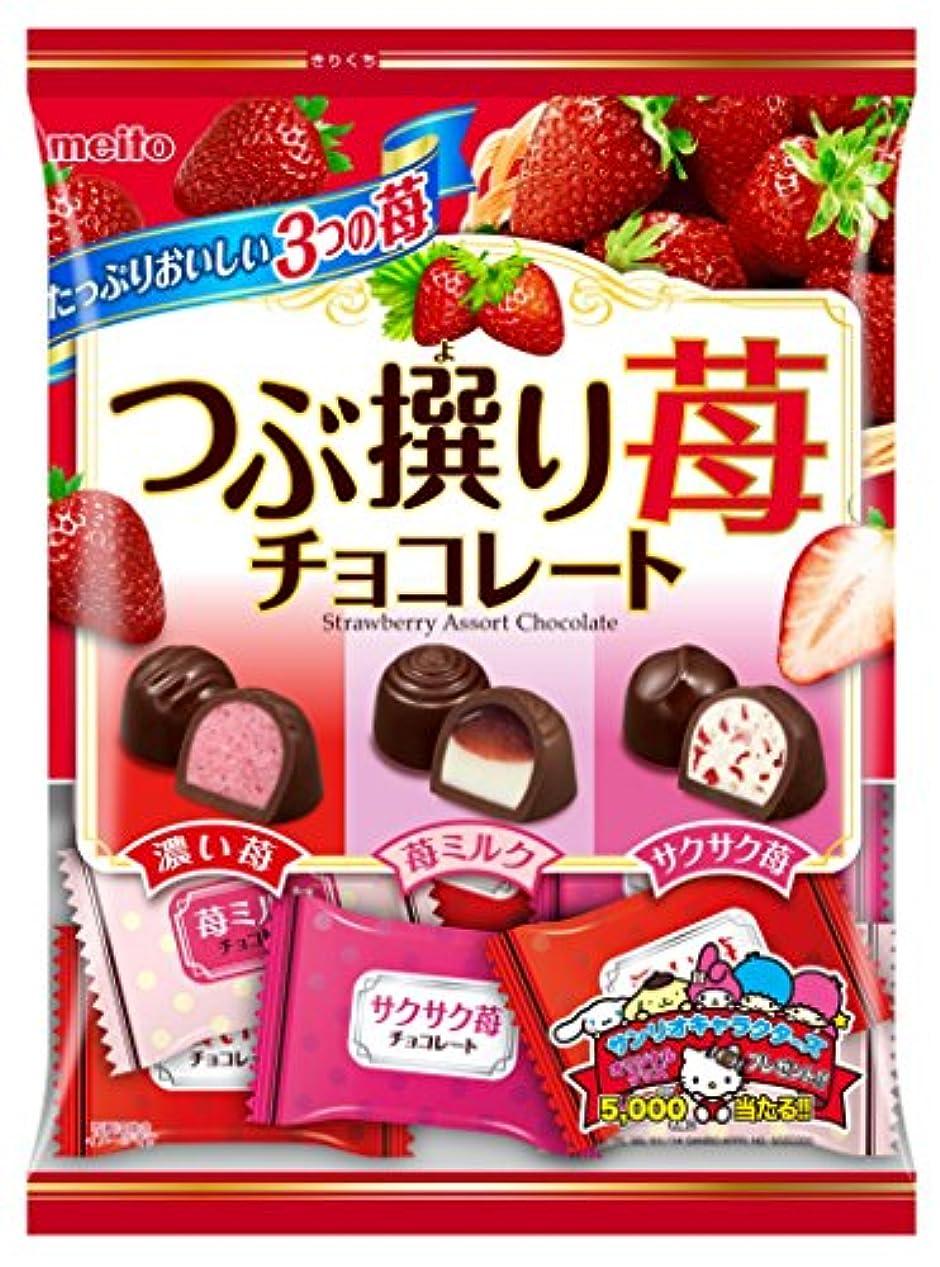 コスチューム悲惨出口名糖産業 つぶ撰り苺チョコレート 290g