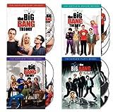 Big Bang Theory: Seasons 1-4 [DVD] [Import]
