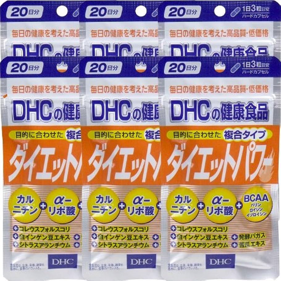 シード一ハイブリッドDHC ダイエットパワー 20日分(60粒) ×6個