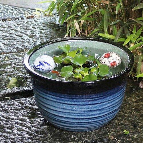 信楽焼 10号藍の色 すいれん鉢 深型 メダカ鉢 睡蓮鉢 スイレン鉢 金魚鉢 水鉢 陶器 su-0107 (藍の色)