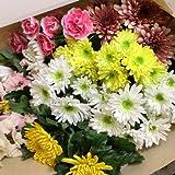新鮮できれいなお花をお入れします!! お供え・お彼岸用に♪季節のお花の詰めあわせ 和風セット 20本