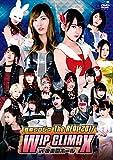豆腐プロレス The REAL 2017 WIP CLIMAX in 8.29 後楽園ホール[DVD]