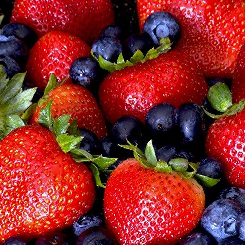 RoomClip商品情報 - アロマフレグランスオイル ベリーベリー(Very Berry) 10ml