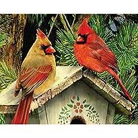 LovetheFamily 松の木の下の鳥の家 数字油絵 数字キット塗り絵 手塗り DIY絵 デジタル油絵 ホーム オフィス装飾 40x50cm (フレームレス)