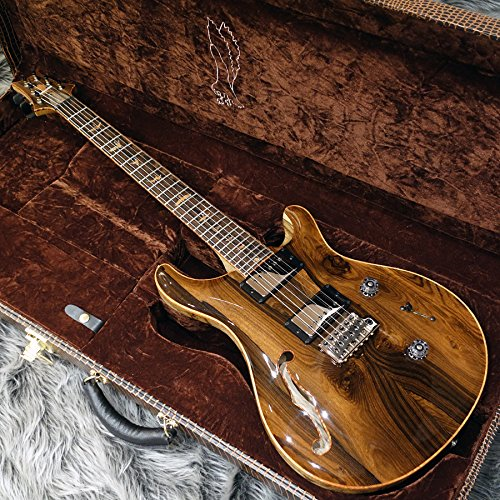 Paul Reed Smith(PRS) Private Stock Custom 24 Semi-hollow with f-hole【NAMM 2018モデル】