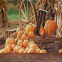 GladsBuyかぼちゃ10' x 10'コンピュータ印刷写真Backdrop秋テーマ背景s-1989