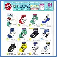 【鉄下 TETSUSHITA】 鉄下 ロング 【メッシュ】 サイズ 15~21cm 日本製 (E4系MAX)