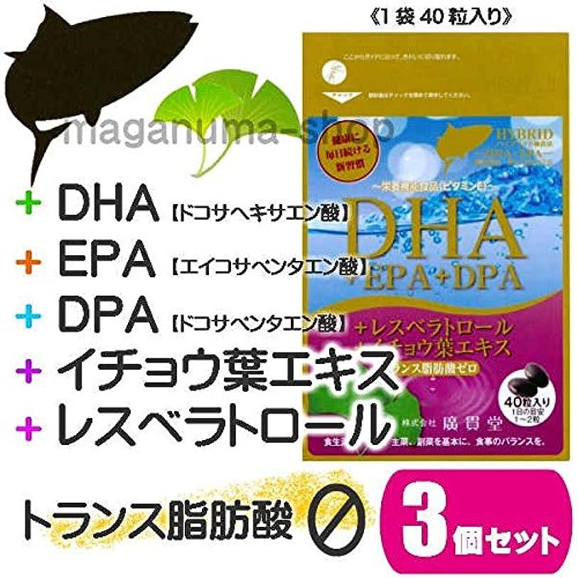 差段階合体DHA+EPA+DPA+レスベラトロール+イチョウ葉エキス 3個セット
