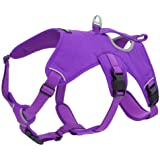 Voyager Padded and Breathable Control Dog Walking Harness for Big/Active Dogs, (Purple, Small)