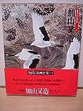 現代日本画全集〈第17巻〉加山又造 (1980年)