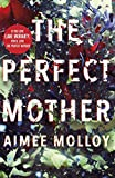 The Perfect Mother: A gripping thriller with a nail-biting twist (English Edition)