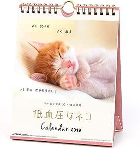 アートプリントジャパン 2019年 低血圧なねこ カレンダー vol.022 1000100959