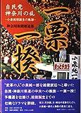一票一揆 自民党神奈川の乱~小泉総理誕生の軌跡~