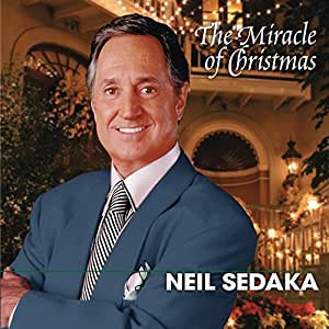 Miracle of Christmas (Fan) (Snys) (Bril)