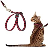 """PUPTECK Cat Harness with Leash Set - Adjustable Soft Strap with Figure 8"""" Style Harness, Adorable and Special"""