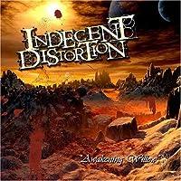 Indecent Distortion - Awakening Willow【CD】 [並行輸入品]