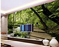 Wapel 3 次元のバスルームの壁紙ホームデコレーション木の橋木の 3 次元空間の背景の壁の壁画を 3 次元の絵画 絹の布 250x175CM