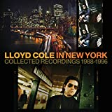 In New York (Collected Recordings 1988-1996)