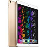 Apple iPad Pro 10.5IN WiFi 512GB Gold (Renewed)