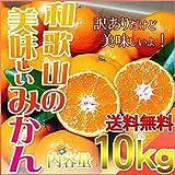 訳あり みかん 和歌山県産 ご家庭用 10kg