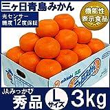 三ヶ日青島みかん【秀品】Lサイズ3キロ(極上三ケ日青島みかん)