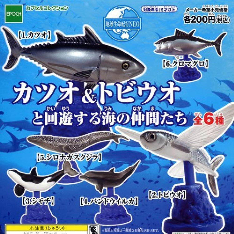 カツオ&トビウオと回遊する海の仲間たち カプセル 地球生命紀行NEO エポック(全6種フルコンプセット)