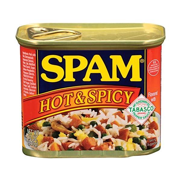 ホーメル スパム ホット&スパイシー 340gの商品画像