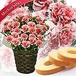 母の日カーネーション4号鉢お菓子セットバームクーヘンチェリータルト赤系花とスイーツフラワーギフト鉢花