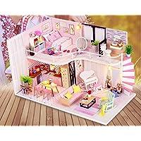 Efivs Arts ドールハウス Anna's Pink melody 小屋モデル ミニチュア 工具とオルゴール付属 防塵ケース付属 手作りキットセット