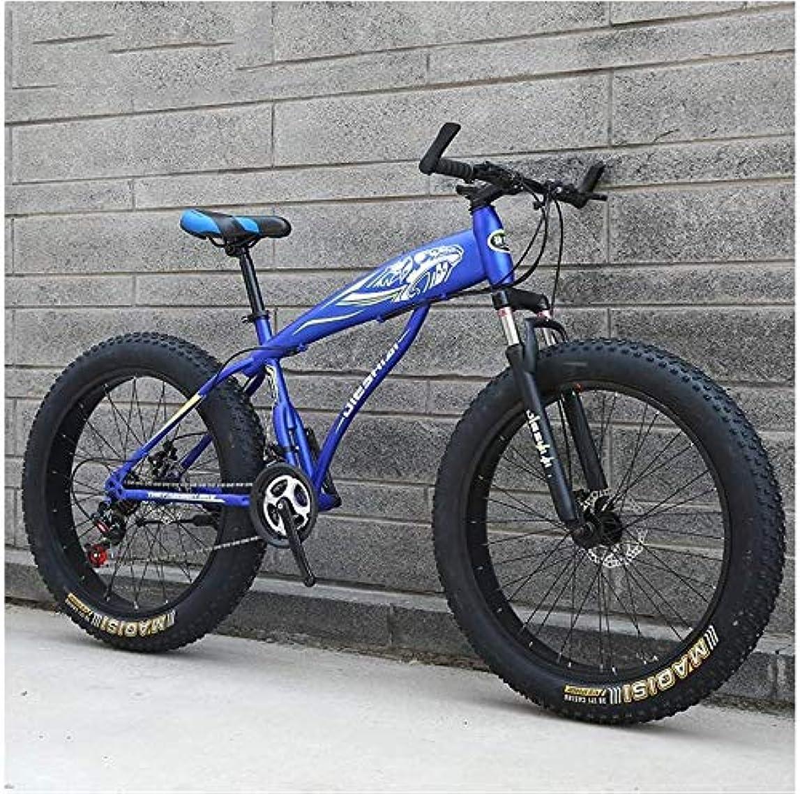 容器ヶ月目ビット健康の旅、大人のマウンテンバイク、男の子女の子ファットタイヤマウンテントレイルバイク、高炭素鋼フレーム、デュアルディスクブレーキハードテイルマウンテンバイク、旅行の利便性 (Color : Blue D, Size : 24 Inch 27 Speed)