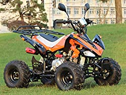 IceBear(アイスベアー) 最新型四輪バギー ATV 50cc 前進3速バック付 ミニカー登録 公道走行可 オレンジ HL50HO
