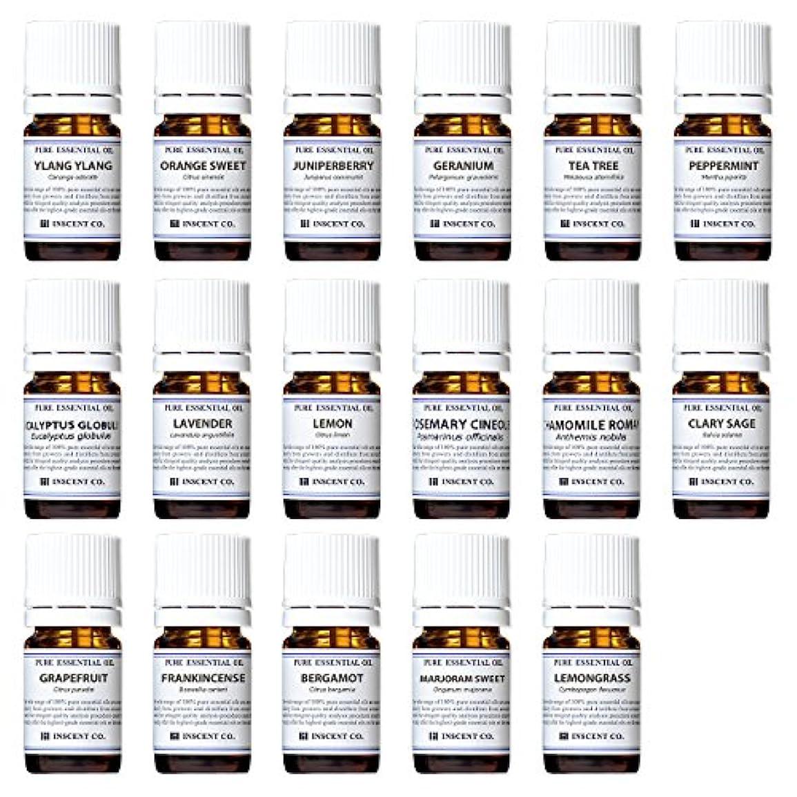割合リップ恐れアロマテラピー検定香りテスト対応17種セット エッセンシャルオイル 精油 AEAJ インセント