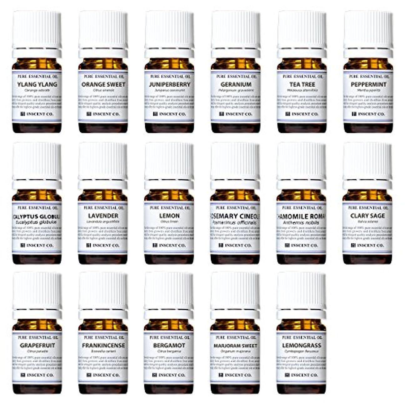 照らすマングル可愛いアロマテラピー検定香りテスト対応17種セット エッセンシャルオイル 精油 AEAJ インセント