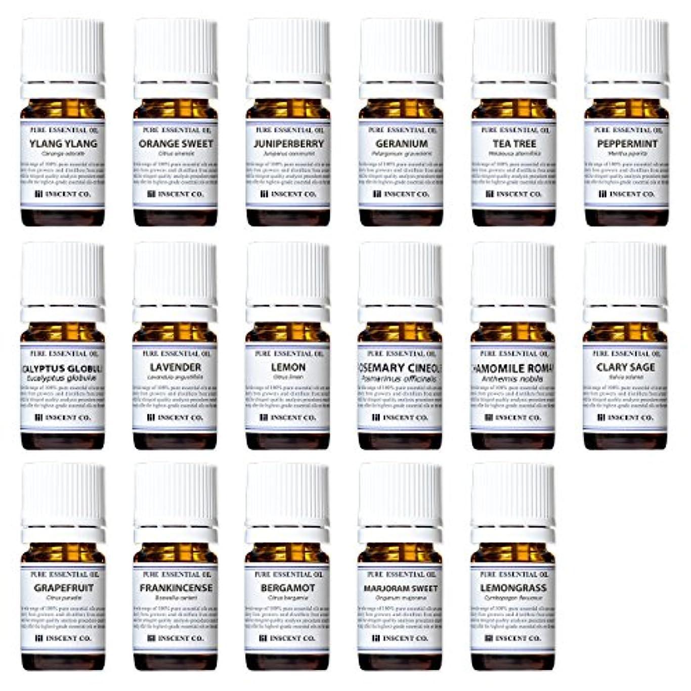 提唱する奇妙な体操アロマテラピー検定香りテスト対応17種セット エッセンシャルオイル 精油 AEAJ インセント