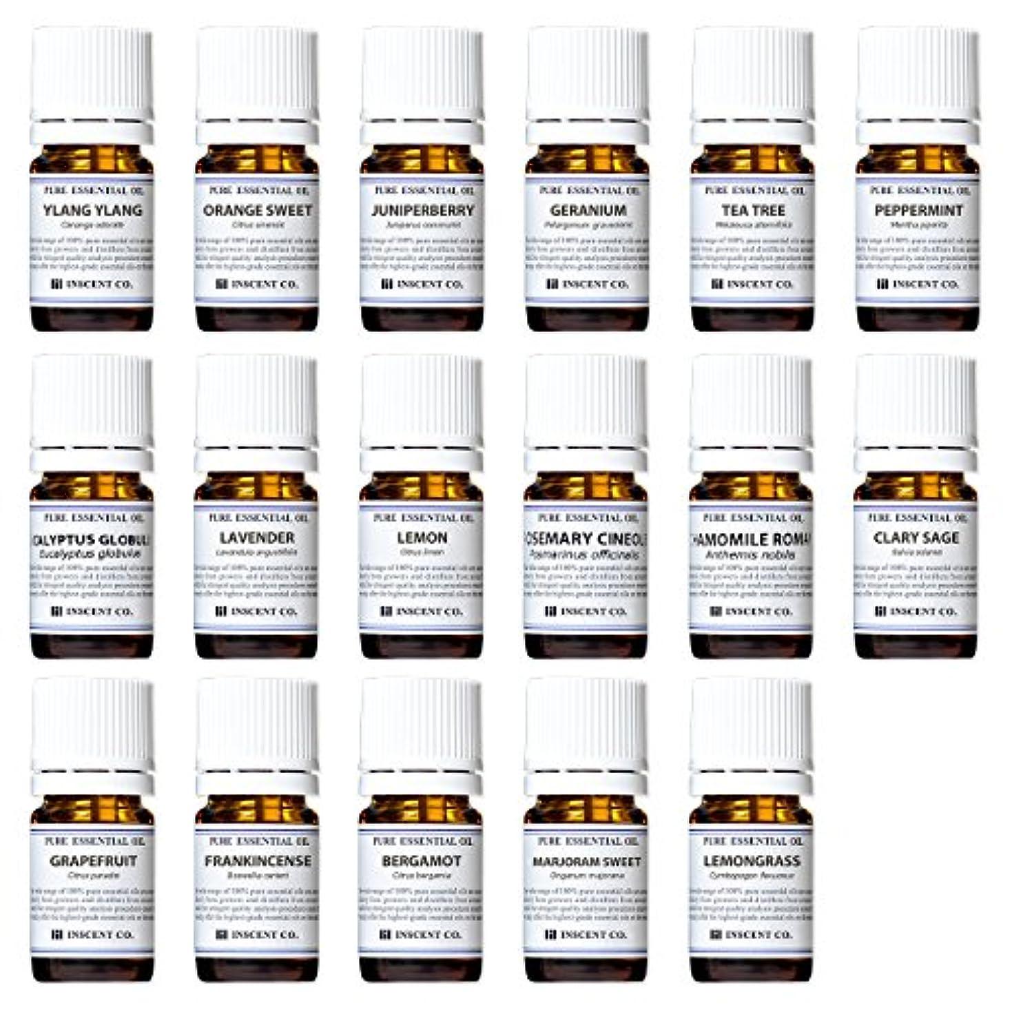 他のバンドで万歳絶滅アロマテラピー検定香りテスト対応17種セット エッセンシャルオイル 精油 AEAJ インセント
