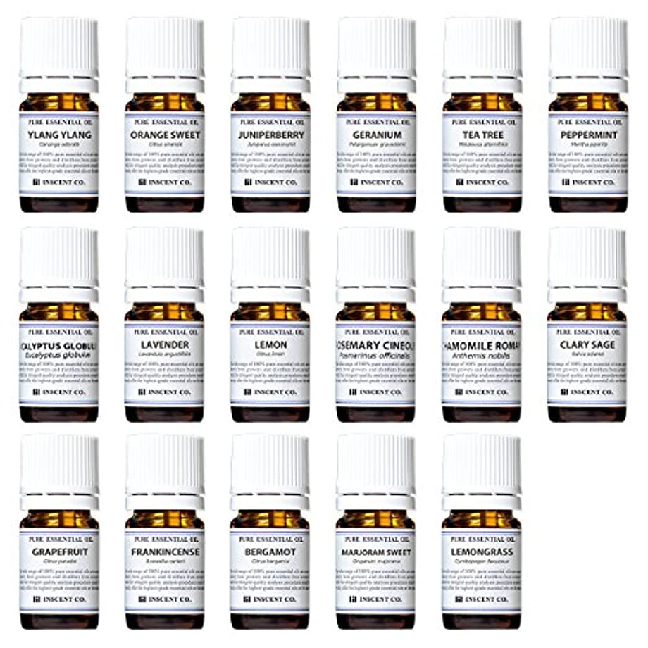 努力便宜ミュートアロマテラピー検定香りテスト対応17種セット エッセンシャルオイル 精油 AEAJ インセント