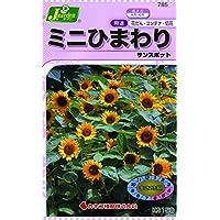カネコ種苗 草花タネ785 ミニひまわりサンスポット 10袋セット