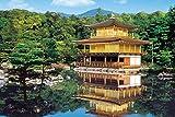 1000ピース ジグソーパズル 新緑の金閣寺―京都(50x75cm)