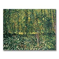 Trees and Undergrowth 1887 by Vincent van Gogh 18x24-Inch Canvas Wall Art 【Creative Arts】 [並行輸入品]