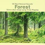 3Dリアル自然音「森の静けさ」 画像