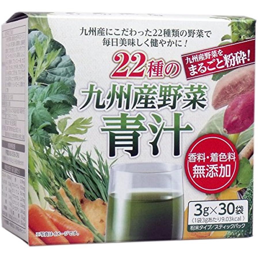 ラメ座標黒22種の九州産野菜青汁 3g×30袋入