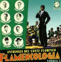 Vol. 5-Flamencologia